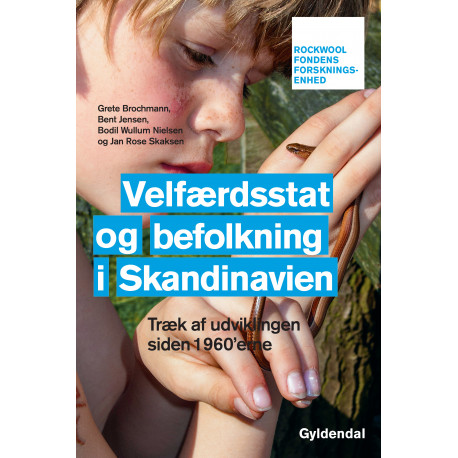 Velfærdsstat og befolkning i Skandinavien: Træk af udviklingen siden 1960'erne