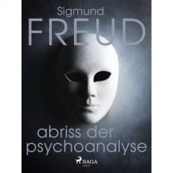 Abriss der Psychoanalyse