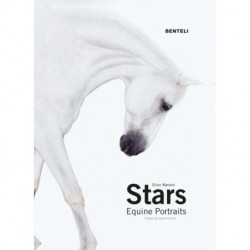 Stars: Equine Portraits