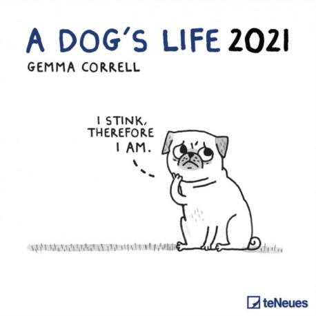 DOGS LIFE 30 X 30 GRID CALENDAR 2021
