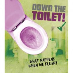 Down the Toilet!: What happens when we flush?