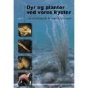 Dyr og planter ved vores kyster: en snorkelguide til livet på lavt vand