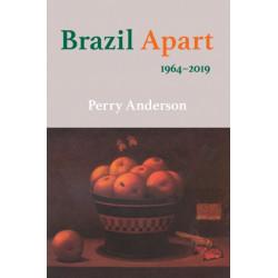 Brazil Apart: 1964-2019