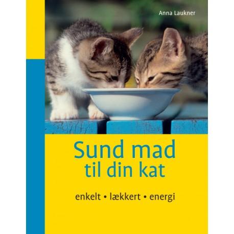 Sund mad til din kat: enkelt lækkert energi