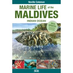 Marine Life of the Maldives - Indian Ocean