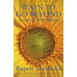Ways to Go Beyond and Why They Work: Seven Spiritual Practices in a Scientific Age