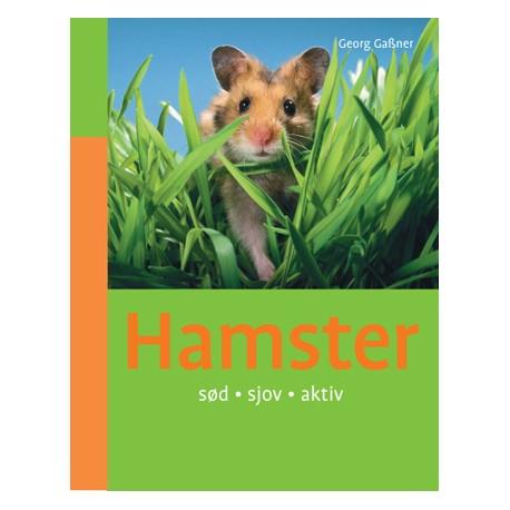 Hamster: sød sjov aktiv