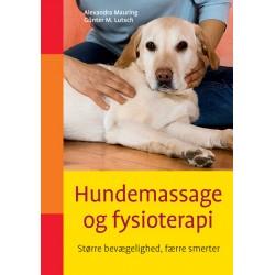 Hundemassage og fysioterapi: Større bevægelighed, færre smerter