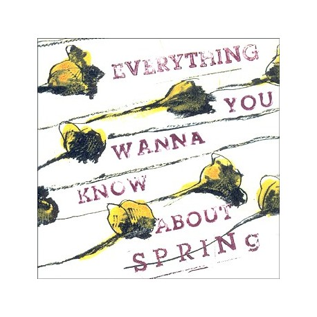 Everything you wanna know about spring