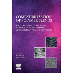 Compatibilization of Polymer Blends: Micro and Nano Scale Phase Morphologies, Interphase Characterization, and Properties
