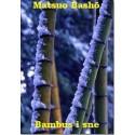 Bambus i sne