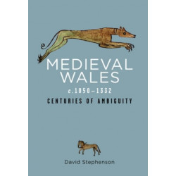 Medieval Wales c.1050-1332: Centuries of Ambiguity