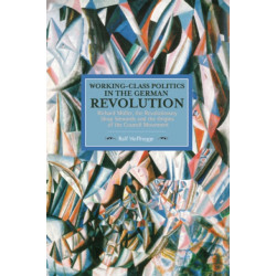 Working Class Politics In The German Revolution (historical Materialsim, Volume 77): Richard Muller, the Revolutionary Shop Stewards and the Origins of the Council Movement