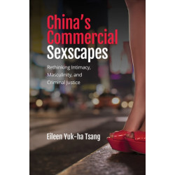 China's Commercial Sexscapes: Rethinking Intimacy, Masculinity, and Criminal Justice