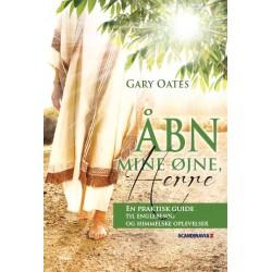 Åbn mine øjne, Herre: En praktisk guide til englebesøg og himmelske oplevelser