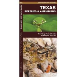 Texas Reptiles & Amphibians: A Folding Pocket Guide to Familiar Species