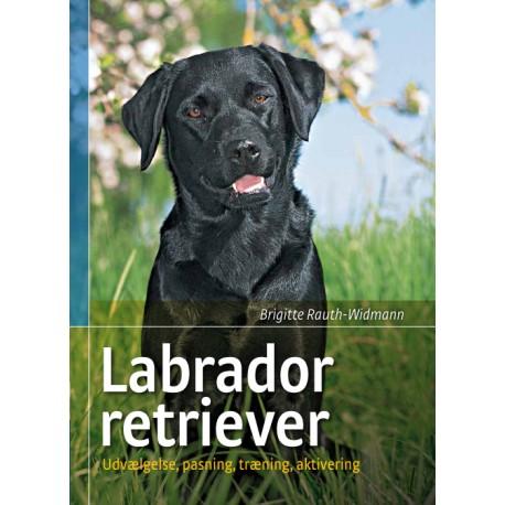 Labrador retriever: Udvælgelse, pasning, træning, aktivering