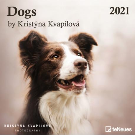 DOGS 30 X 30 GRID CALENDAR 2021