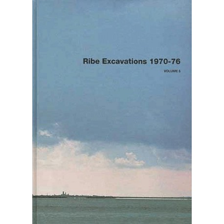 Ribe Excavations 1970-76 (Volume 5)