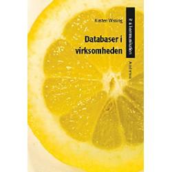 Databaser i virksomheden