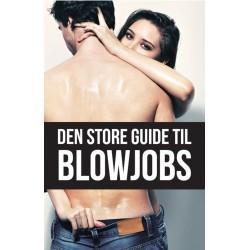 Den store guide til BLOWJOB