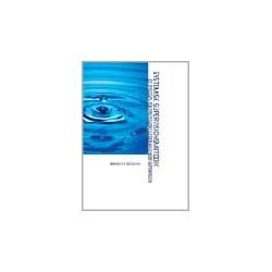 Systemisk supervisionsmetodik: Et sprogspil for professionelle, der anvender supervision