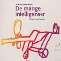 De mange intelligenser: i børnehaven