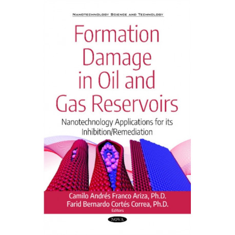 Formation Damage in Oil and Gas Reservoirs: Nanotechnology Applications for its Inhibition/Remediation