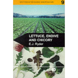 Lettuce, Endive and Chicory