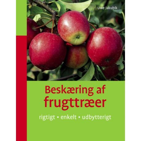 Beskæring af frugttræer: rigtigt enkelt udbytterigt