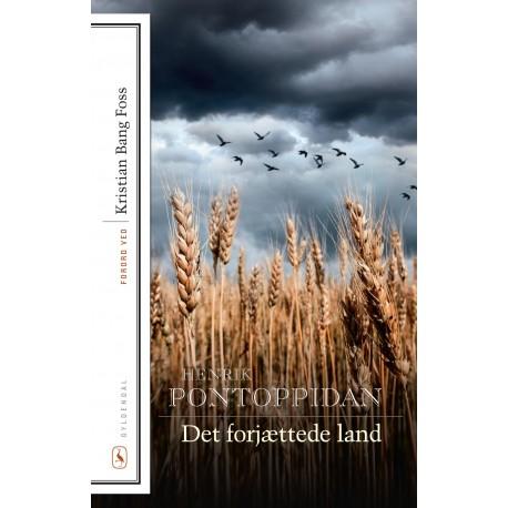 Det forjættede land: Med forord af Kristian Bang Foss