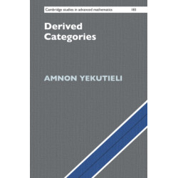 Derived Categories
