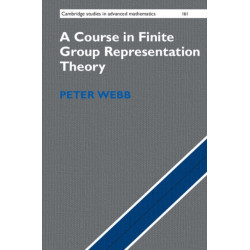 A Course in Finite Group Representation Theory