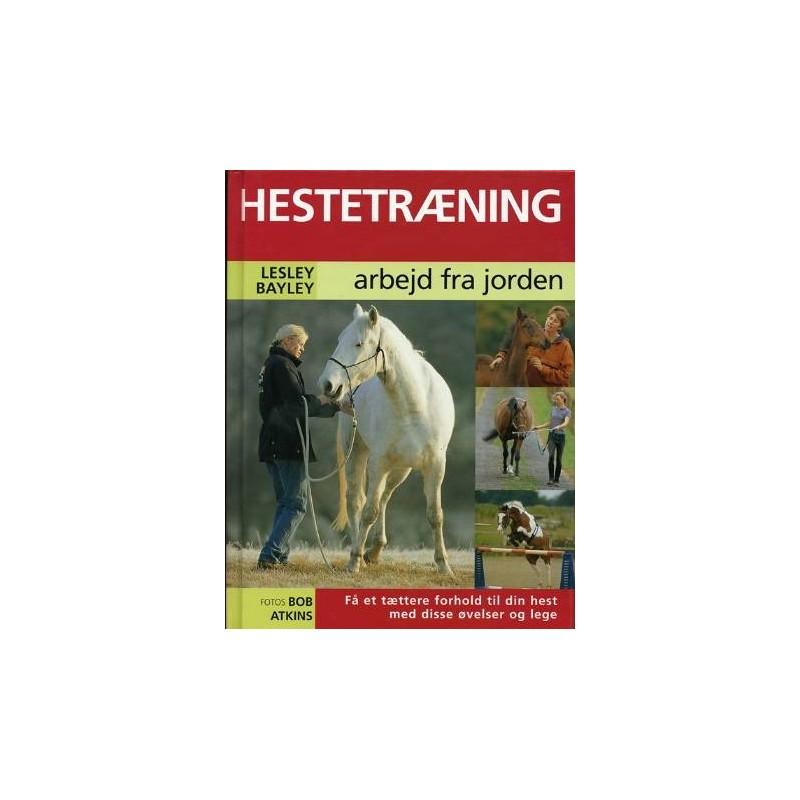 Hestetræning fra jorden