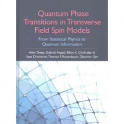 Quantum Phase Transitions in Transverse Field Spin Models: From Statistical Physics to Quantum Information
