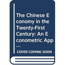 The Chinese Economy in the Twenty-First Century - an Econometric Approach