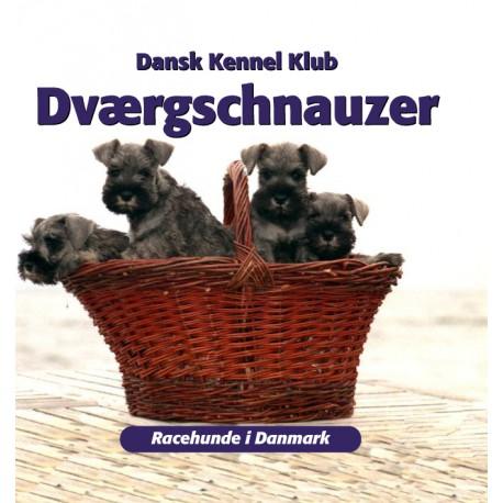 Dværgschnauzer