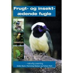 Frugt- og insektædende fugle: - naturlig pasning
