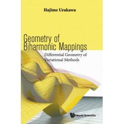 Geometry Of Biharmonic Mappings: Differential Geometry Of Variational Methods