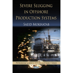 Severe Slugging in Offshore Production Systems