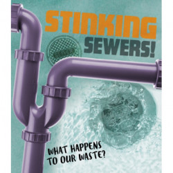 Stinking Sewers!: What happens to our waste?