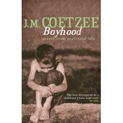 Boyhood: Scenes from provincial life