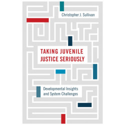Taking Juvenile Justice Seriously: Developmental Insights and System Challenges