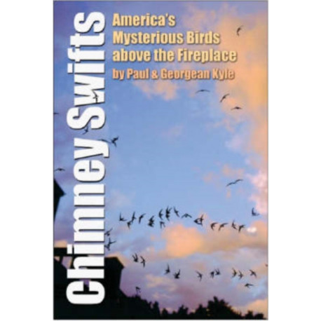 Chimney Swifts: America's Mysterious Birds Above the Fireplace